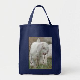 Chèvre de bébé sac en toile épicerie