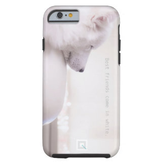 Chien de Samoyed, cas de l'iPhone 6/6s Coque iPhone 6 Tough