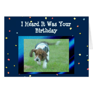 Chien mignon et drôle de la carte d'anniversaire