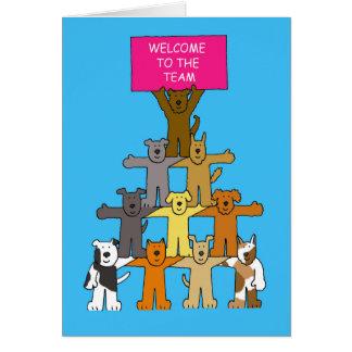 Chiens, accueil à l'équipe carte de vœux