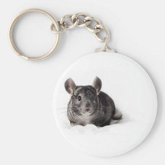 Chinchilla gris mignon dans la couverture porte-clés