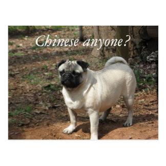 Chinois n'importe qui ? Carte postale de carlin