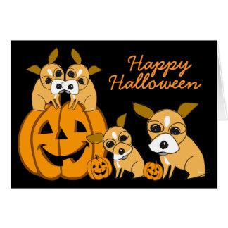 Chiot 4 de chiwawa de carte de Halloween