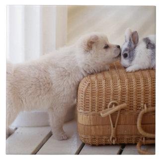 Chiot et lapin carreaux en céramique