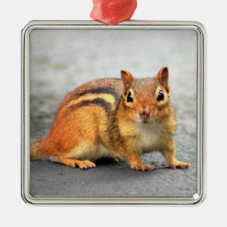 Chipmonk adorable ornement carré argenté