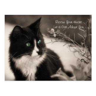 Choyez la délivrance d'adoption votre coeur et ado carte postale