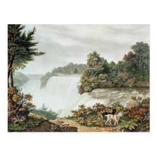 Chutes du Niagara, d'île de chèvre Carte Postale