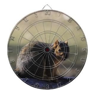 Cible De Fléchettes PANNEAU de DARD d'écureuil de queue de Fox
