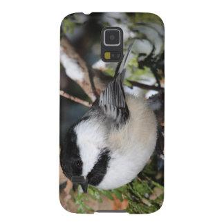 Cickadee Noir-couvert Protections Galaxy S5