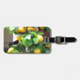 Citrons Étiquette À Bagage