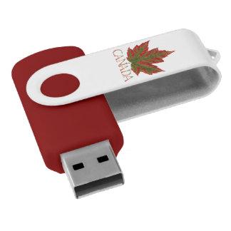 Clé USB Souvenir d'entraînement d'instantané de feuille