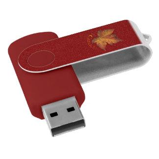 Clé USB Souvenirs du Canada d'entraînement d'instantané de