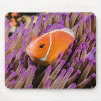 Clownfish mignon Mousepad Tapis De Souris
