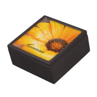 Coffret Cadeau De Première Qualité Fin orange de marguerite africaine d'instantané de