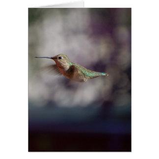 Colibri en vol carte de vœux