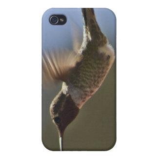 Colibri en vol coques iPhone 4