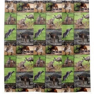 Collage de photo de kangourou, rideau en douche