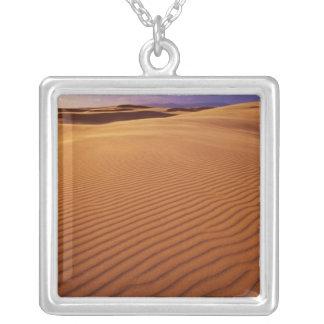 Collier Aire de loisirs nationale de dunes de l'Orégon,