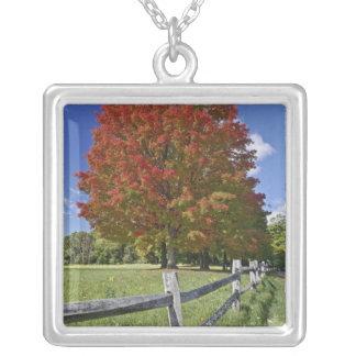 Collier Arbre d'érable rouge dans des couleurs d'automne,