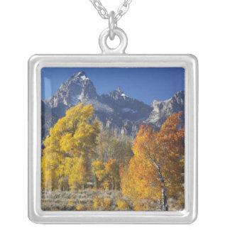 Collier Arbres d'Aspen avec la gamme de montagne de Teton