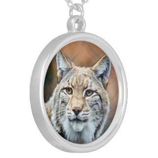 Collier Chat de prédateur de faune de chat sauvage de Lynx