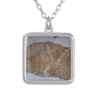Collier Chatons somnolents