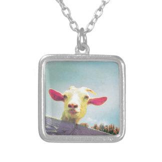 Collier chèvre Rose-à oreilles