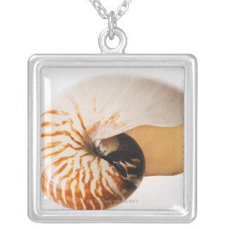 Collier Coquillage de Nautilus (stenomphalus de Nautilus)