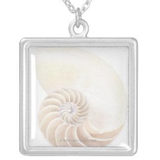 Collier Coquille de Nautilus, plan rapproché