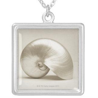 Collier Coquille Pearlised de mer de nautilus