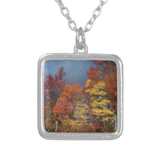 Collier Couleurs de chute dans Blue Ridge Mountains