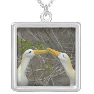 Collier Danse élaborée de cour Waved Albatros,