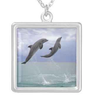 Collier Delfin (Tuemmler plus brut)