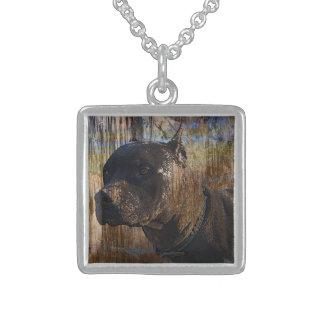 Collier En Argent Le Staffordshire Terrier américain grunge Pitbull