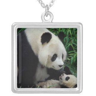 Collier Enfantez le panda et le bébé dans le buisson en