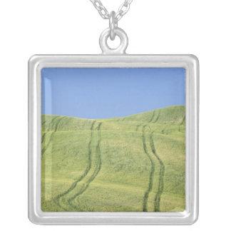Collier Fatiguez les voies dans le domaine de blé, d'Orcia
