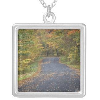 Collier Feuillage d'automne de bord de la route, Vermont