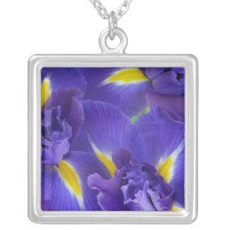 Collier Fleurs d'iris