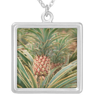 Collier Gisement d'ananas