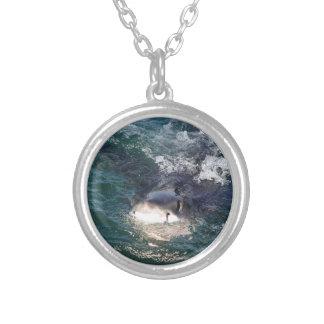 Collier Grand houblonnage d'espion de requin blanc