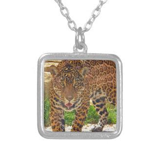 Collier Jaguar