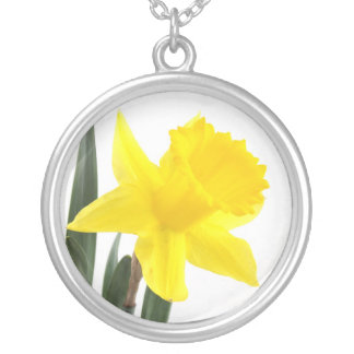 Collier Jonquille jaune simple de narcisse