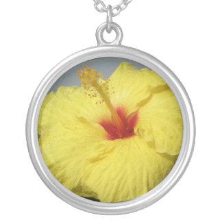 Collier Ketmie hawaïenne jaune