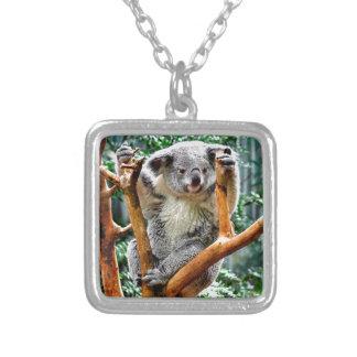 Collier Koala