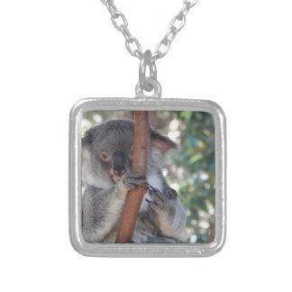 Collier Koala.JPG