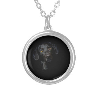 Collier Labrador retriever noir personnalisable