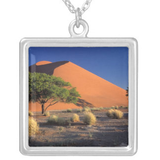 Collier L'Afrique, Namibie, parc de Namib-Naukluff,