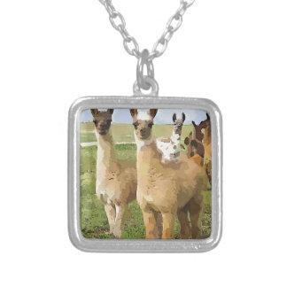 Collier Lamas avec une torsion