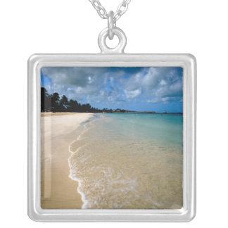 Collier Les Caraïbe, Îles-Sous-le-Vent, Antigua, Dickenson