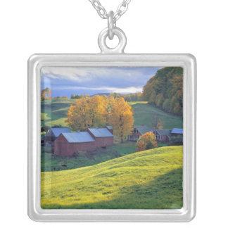 Collier Les Etats-Unis, Vermont, ferme de Jenne. Collines